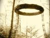 Das Rad des Lebens im Gegenlicht - Urs Heinrich