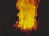 Feuer auf dem See. Die Elemente prallen aufeinander - Urs Heinrich